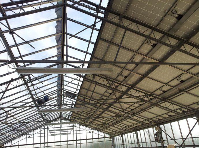 impianto fotovoltaico serra 04